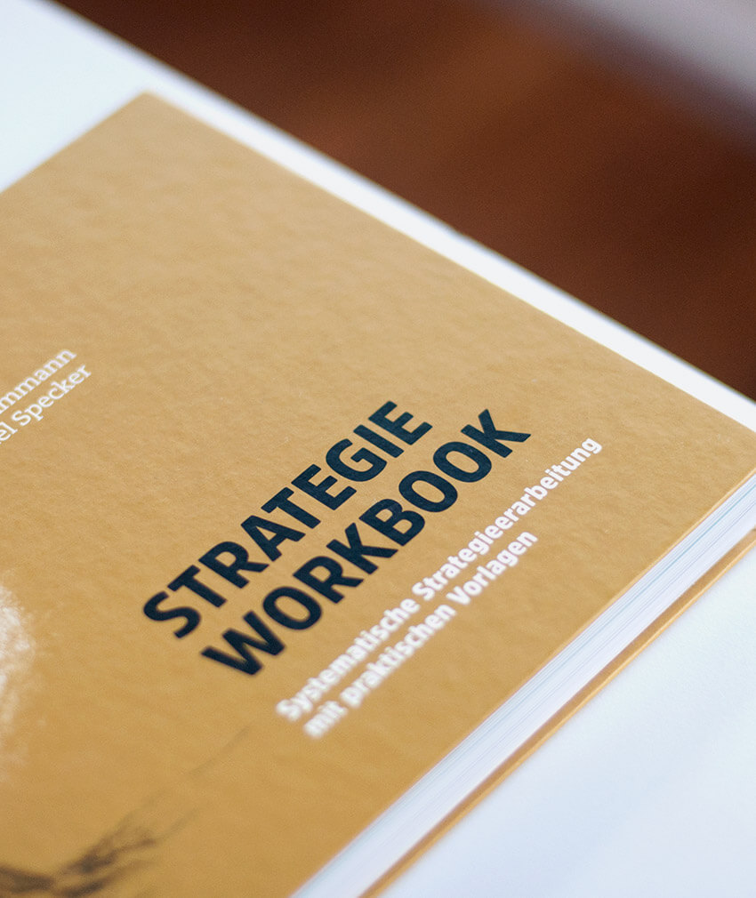NEU: Brandoos Strategie Workbook