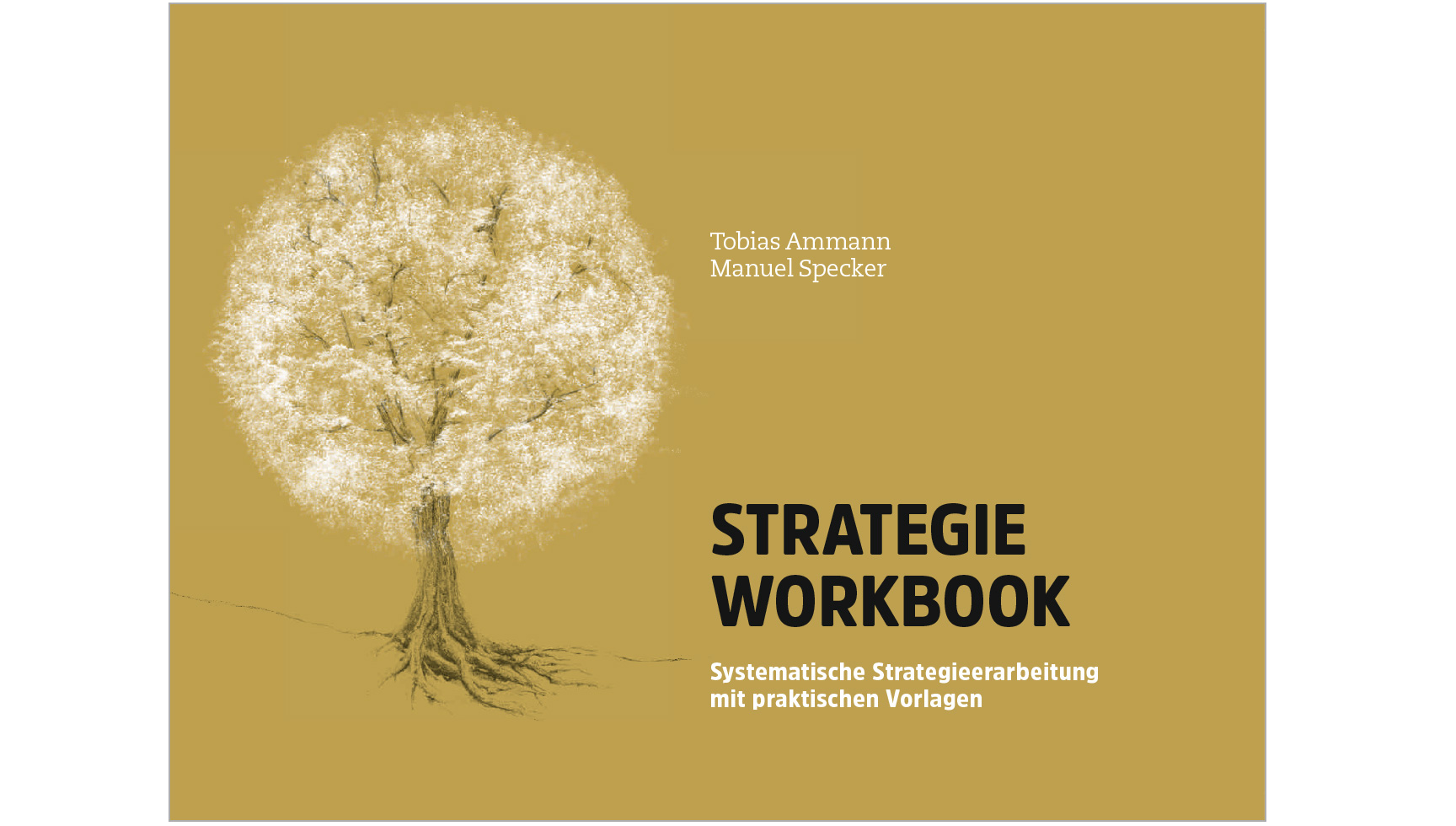 brandoos-workbook-s2